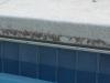 02-dirty-pool2.png